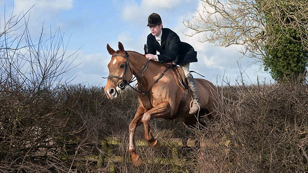 Angus has a range of horses for sale, including both quality hunters and serious competition prospects.